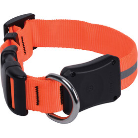 Nite Ize Nite Dawg LED Dog Collar Small Orange